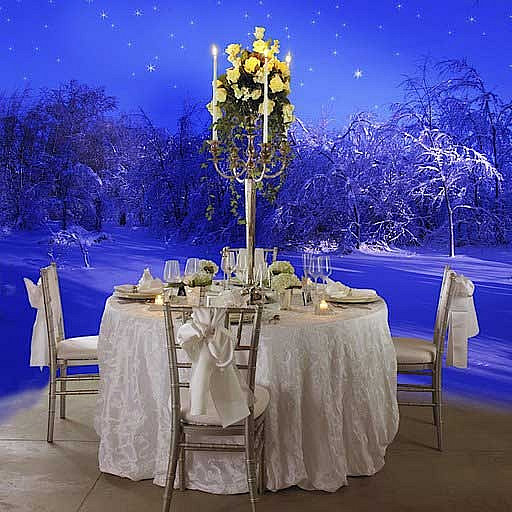 Winter Wonderland Wedding Ideas: Wedding Planning Perfection